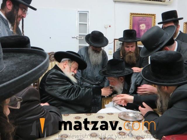 Erlauer Rebbe (235)