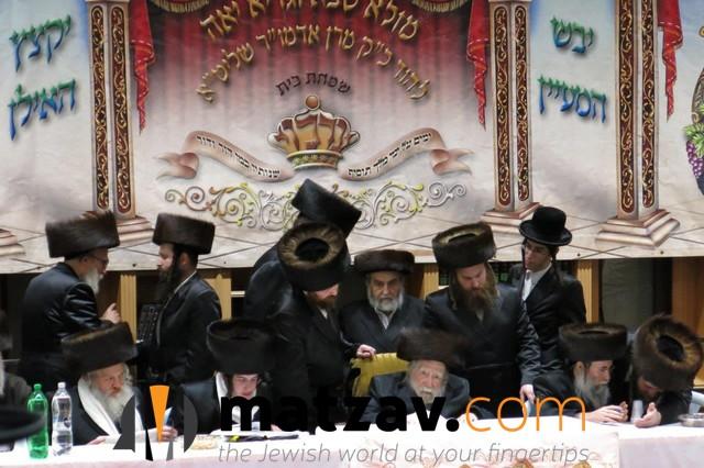 Erlauer Rebbe (238)