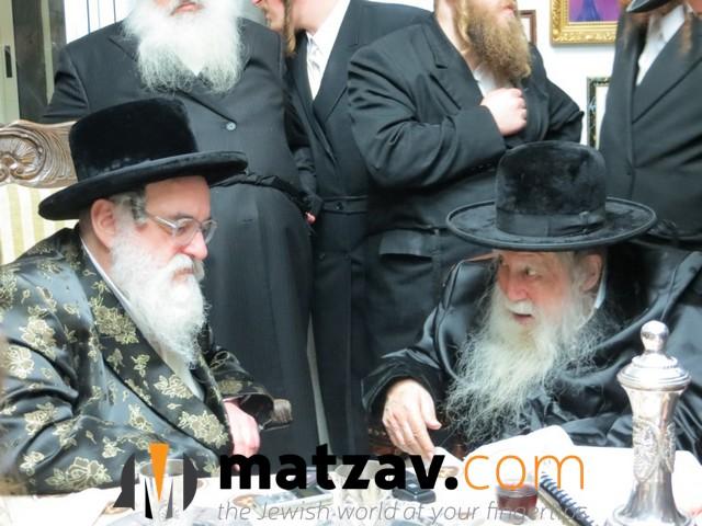 Erlauer Rebbe (241)