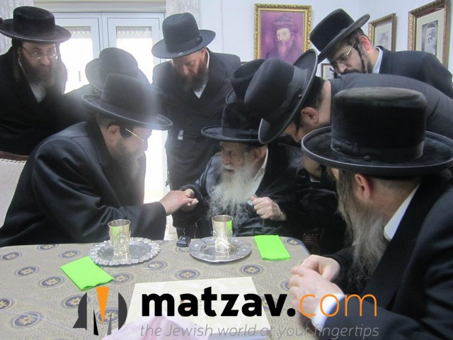 Erlauer Rebbe (244)
