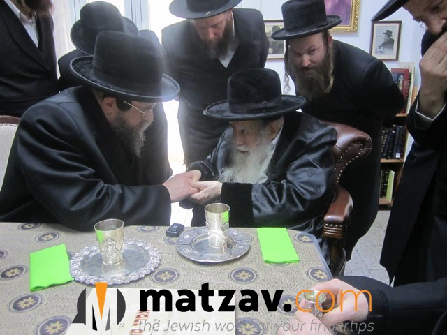 Erlauer Rebbe (245)