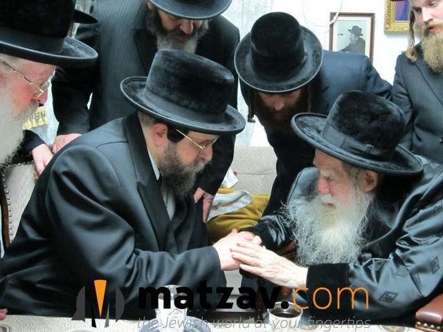 Erlauer Rebbe (246)