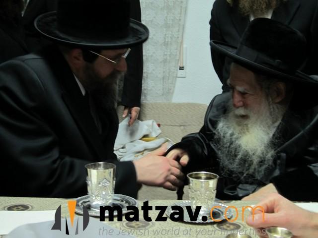 Erlauer Rebbe (247)