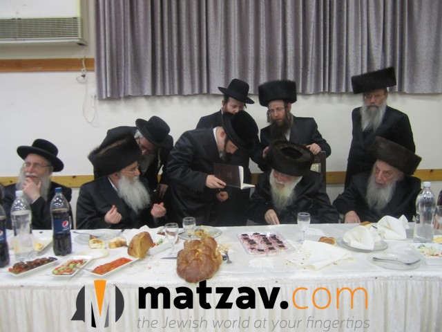Erlauer Rebbe (248)