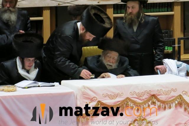 Erlauer Rebbe (253)