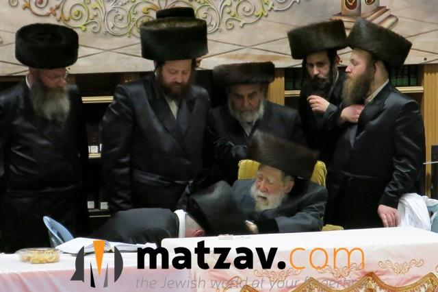 Erlauer Rebbe (254)