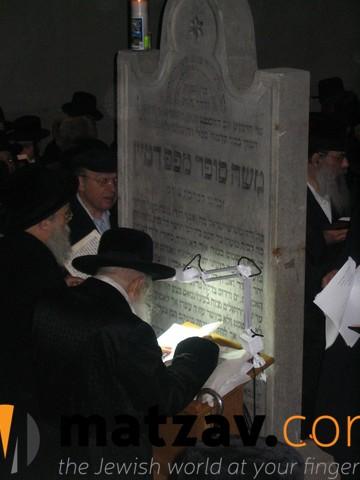 Erlauer Rebbe (255)
