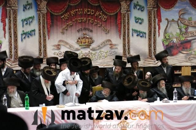 Erlauer Rebbe (259)