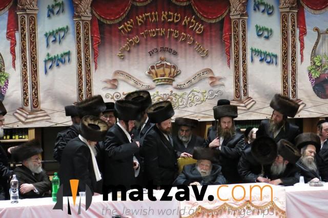 Erlauer Rebbe (260)