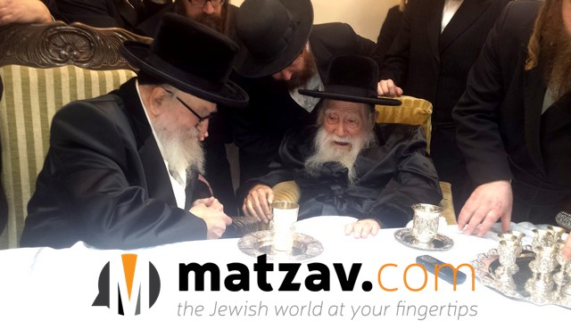 Erlauer Rebbe (261)