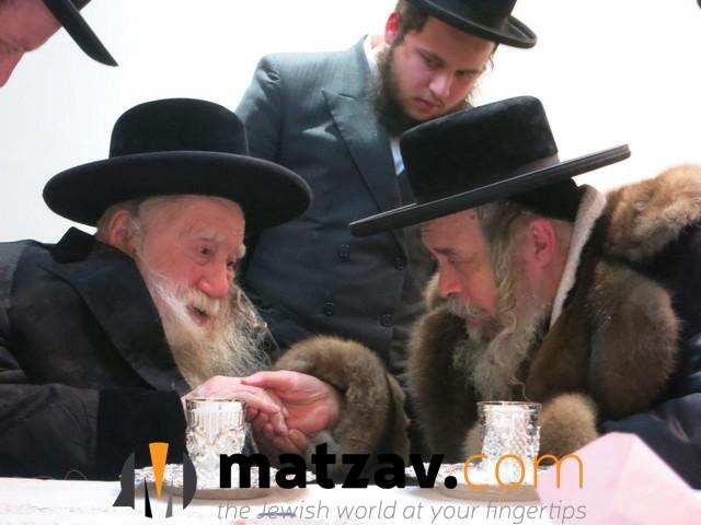 Erlauer Rebbe (277)