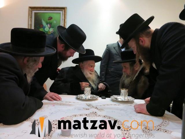 Erlauer Rebbe (279)