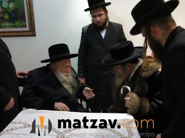 Erlauer Rebbe (282)