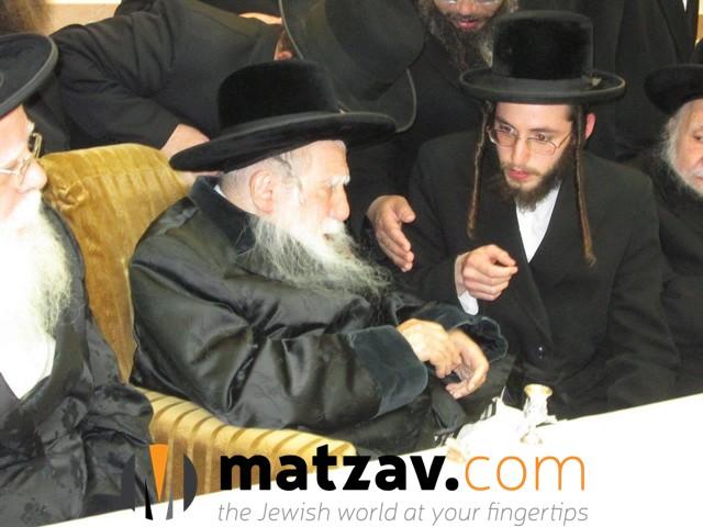 Erlauer Rebbe (285)
