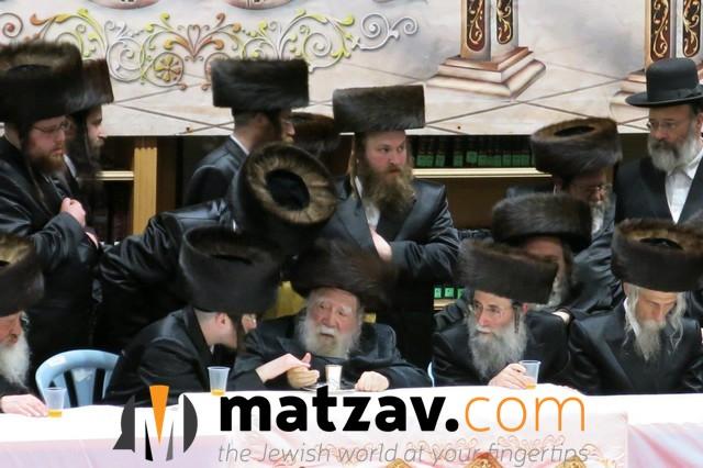 Erlauer Rebbe (290)