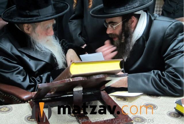 Erlauer Rebbe (292)