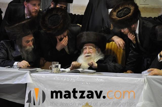 Erlauer Rebbe (3)