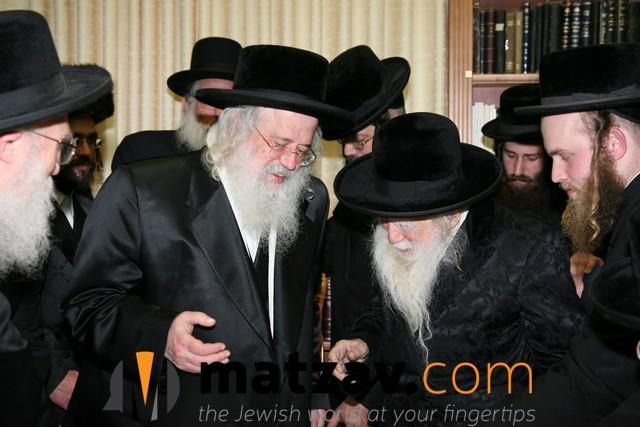 Erlauer Rebbe (31)