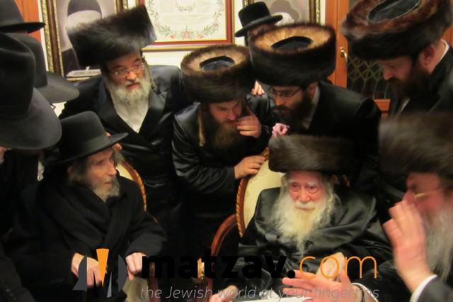 Erlauer Rebbe (310)