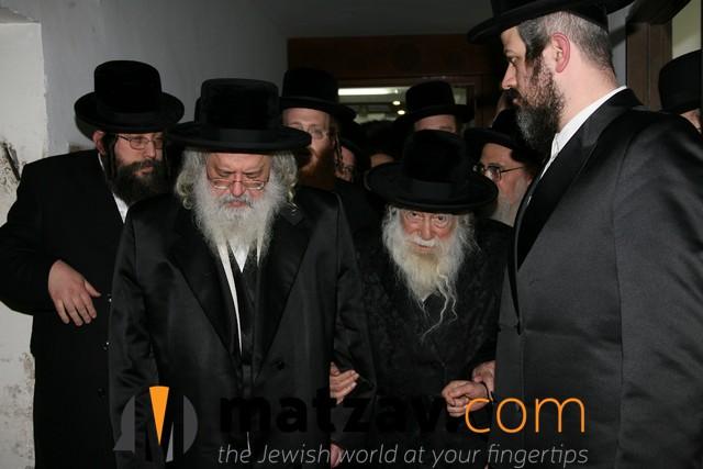 Erlauer Rebbe (32)