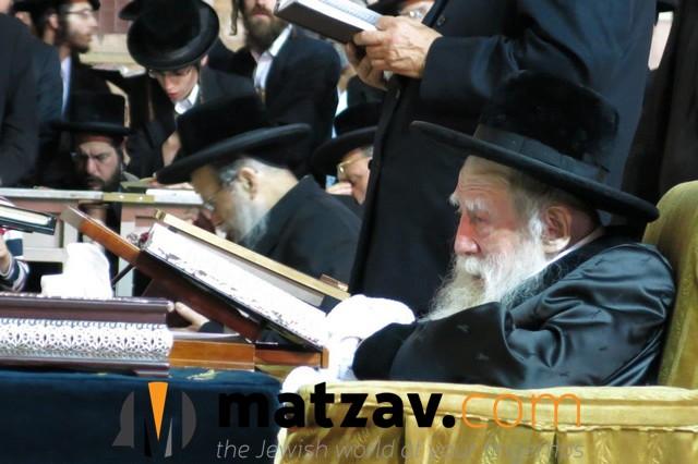 Erlauer Rebbe (321)
