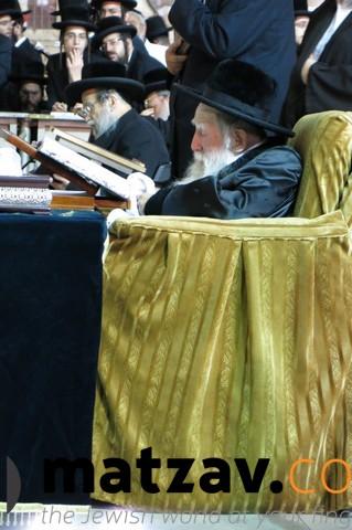 Erlauer Rebbe (323)