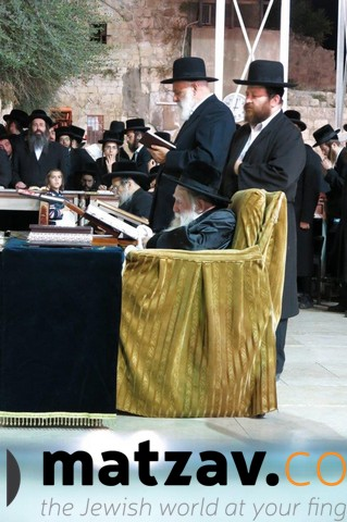 Erlauer Rebbe (324)