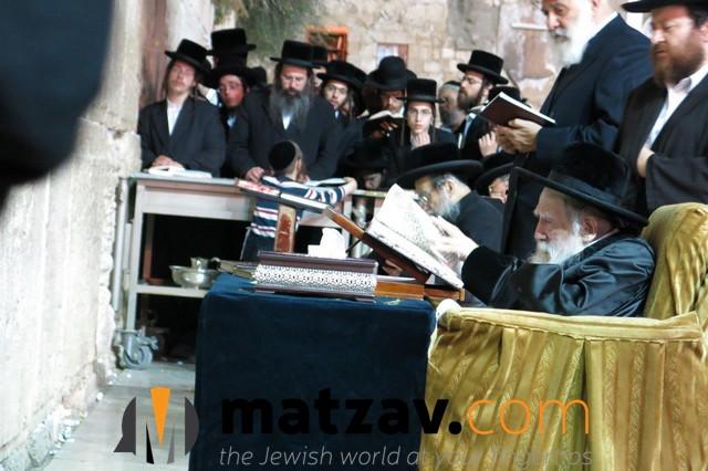 Erlauer Rebbe (326)