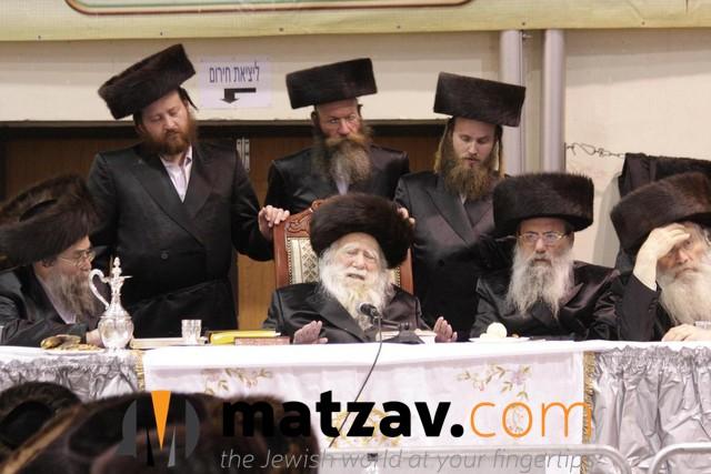 Erlauer Rebbe (336)