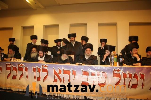 Erlauer Rebbe (341)