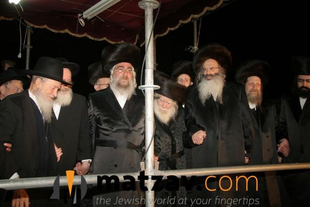Erlauer Rebbe (343)