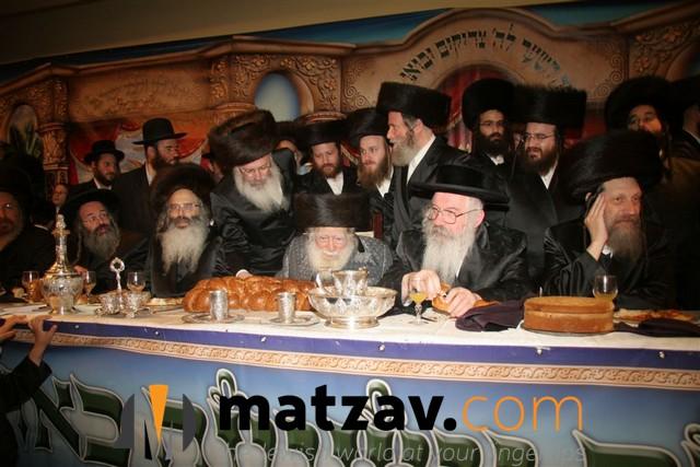 Erlauer Rebbe (35)