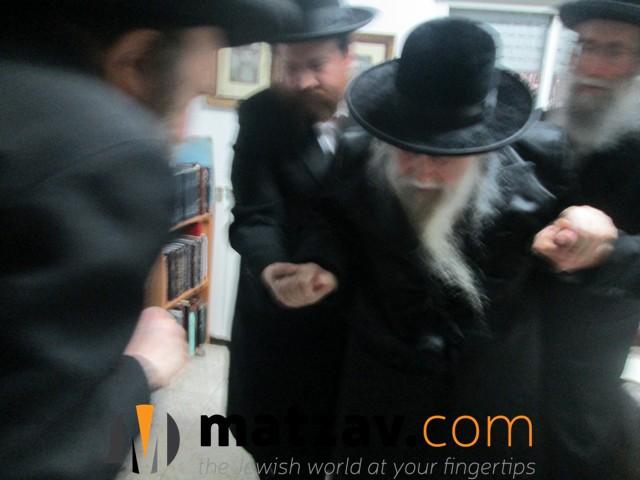 Erlauer Rebbe (364)