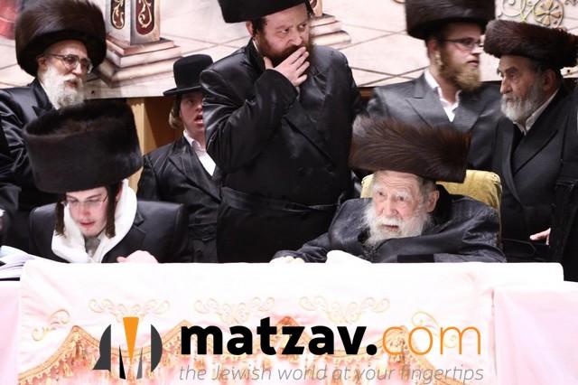 Erlauer Rebbe (369)