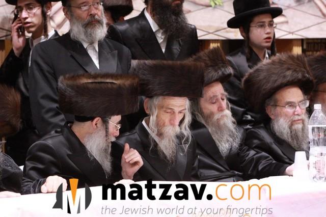 Erlauer Rebbe (374)