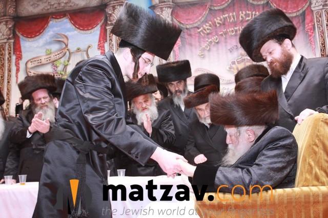 Erlauer Rebbe (377)