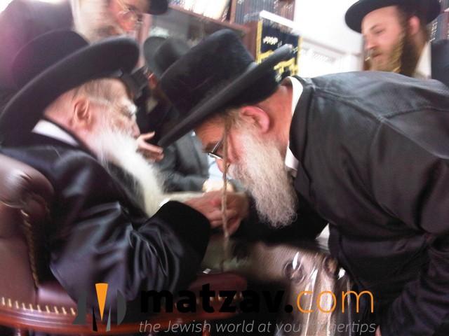 Erlauer Rebbe (393)