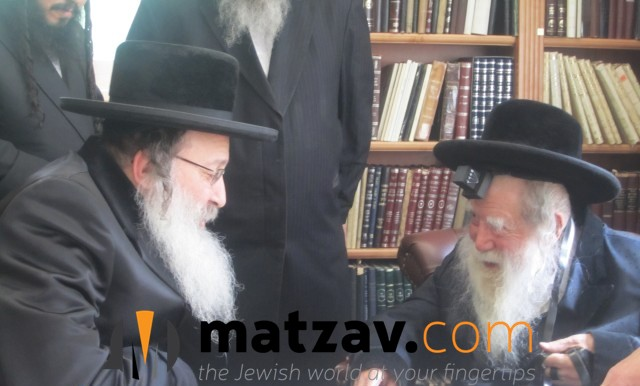 Erlauer Rebbe (394)