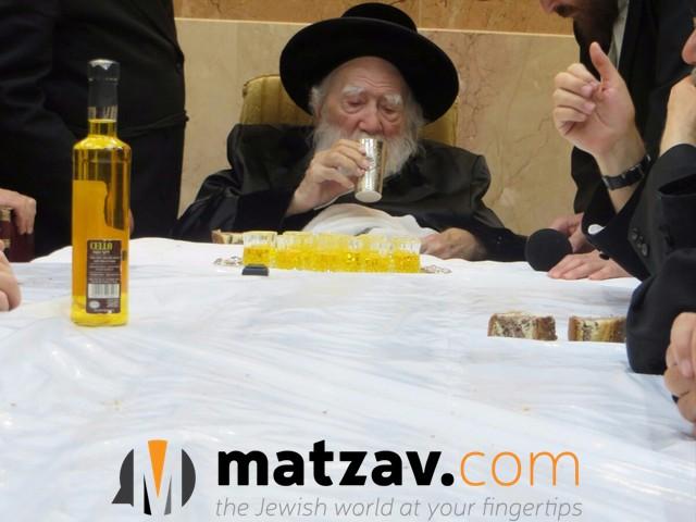 Erlauer Rebbe (397)