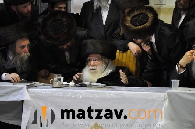 Erlauer Rebbe (4)