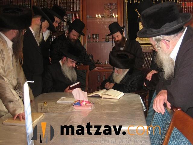Erlauer Rebbe (402)