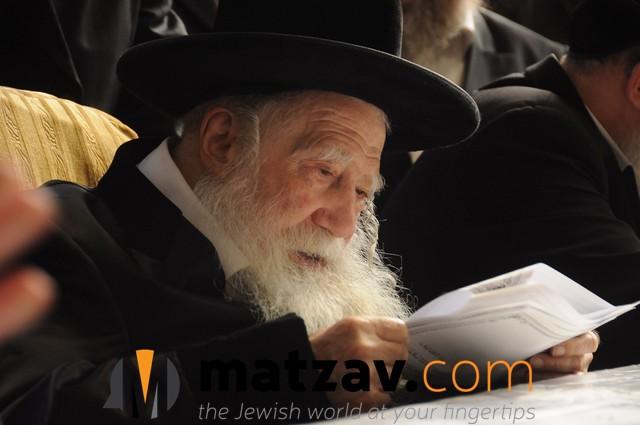 Erlauer Rebbe (412)