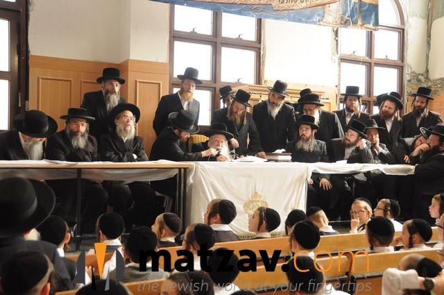 Erlauer Rebbe (413)