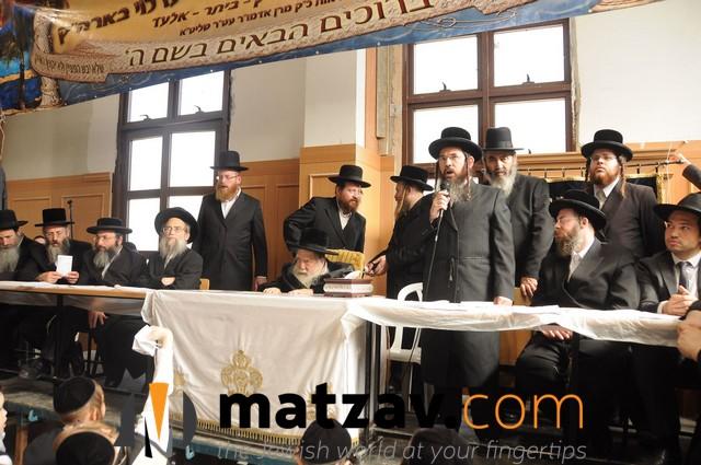 Erlauer Rebbe (414)