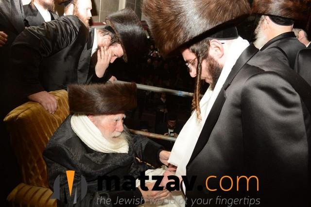 Erlauer Rebbe (418)