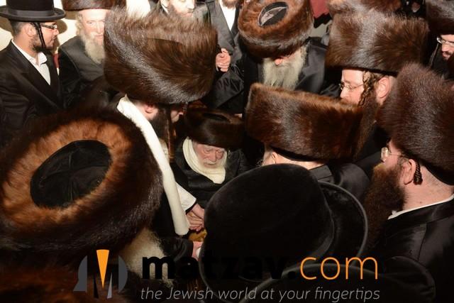 Erlauer Rebbe (422)