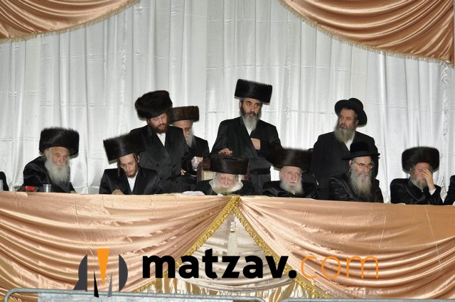 Erlauer Rebbe (424)