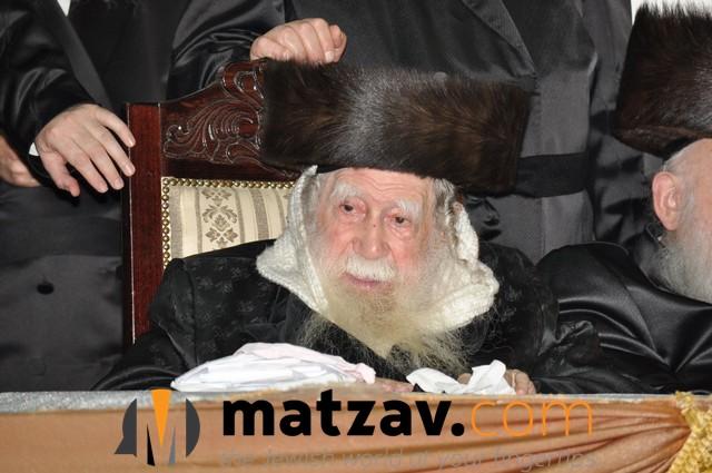 Erlauer Rebbe (426)