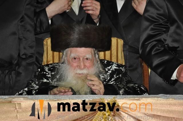 Erlauer Rebbe (434)