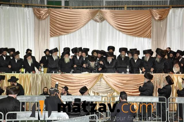 Erlauer Rebbe (436)